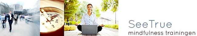 See True Mindfulness Opleidingen