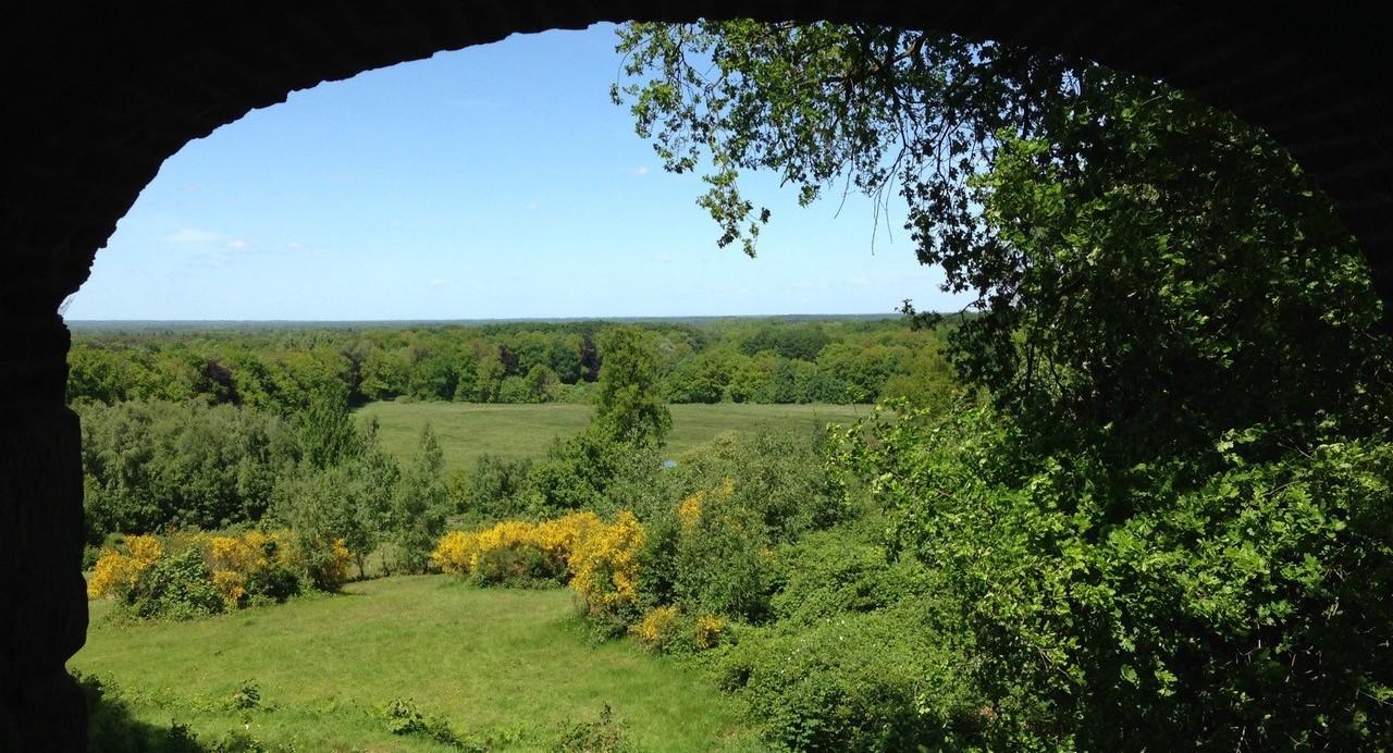 Ga je mee op dagexcursie door het oeroude en levende land van Twente?